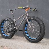 Titanium fat bike